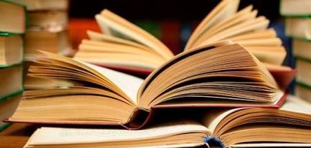 Književnost-u-Močvari