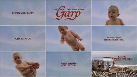 Svijet po Garpu1
