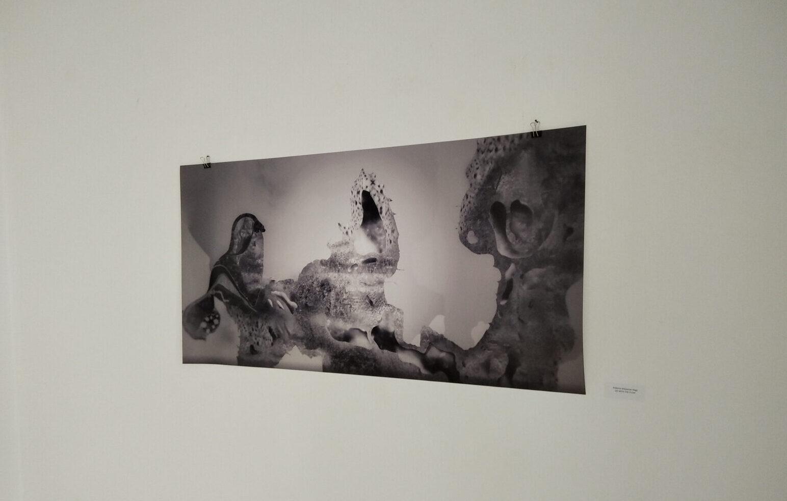 """Otvorena izložba """"Spoznaja stanja: tijek i mijena"""" u galeriji HDLUI-a"""