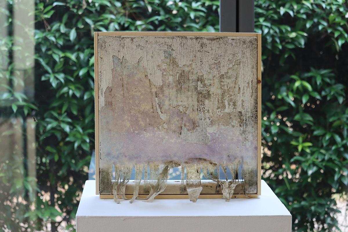 """Otvorena izložba Roberta Ghezzija """"Naturografie"""""""